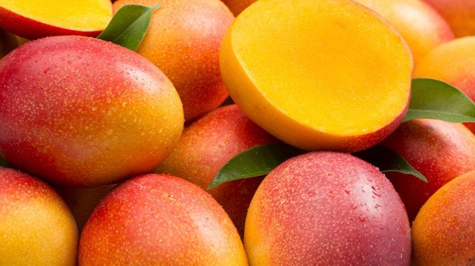 mango-puquymi